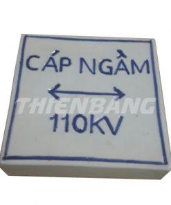 moc-su-cap-dien-110kv-vuong